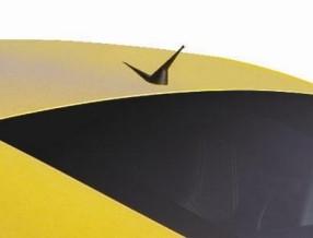 Mansory Antena dachowa V8 Vantage