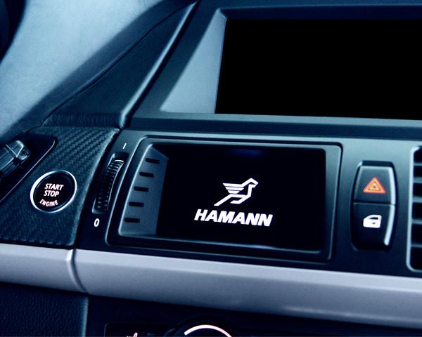 Hamann Wyświetlacz OLED X6 M E71