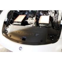 Mansory Obudowa silnika SLS AMG