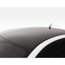 Mansory Dach Carbon Vanquish