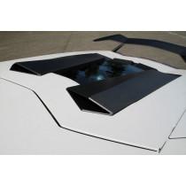 Novitec Wloty powietrza do silnika Aventador Coupe