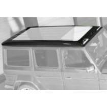 Mansory Dach G AMG W463