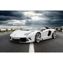 Mansory Widebody Aventador
