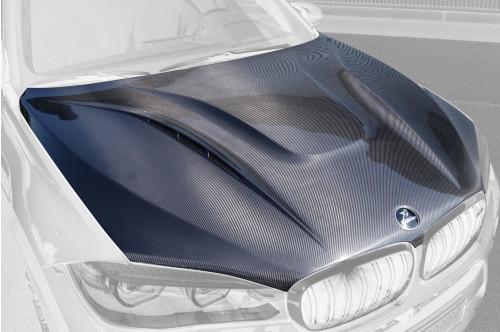 Hamann Maska X6 F16