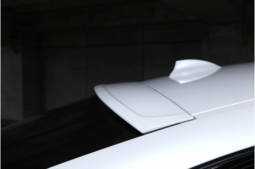 3DDesign Spoiler dachowy X6 F16