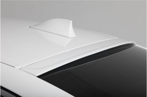 3DDesign Spoiler dachowy 5 F10