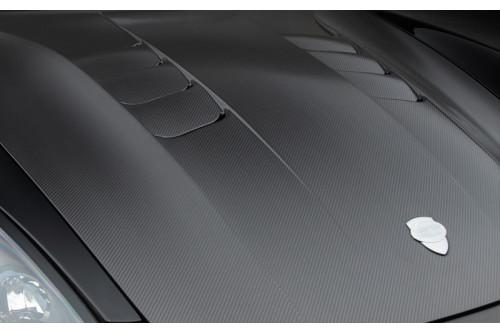 TechArt Maska Carbon Panamera