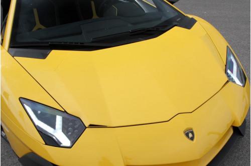 Novitec Maska Aventador SV