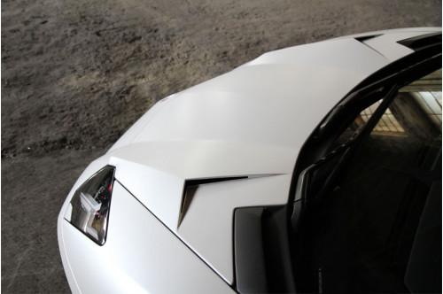 Novitec Maska Aventador S