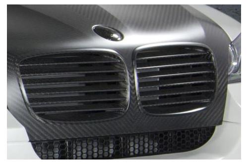 Mansory Grill X6 E71