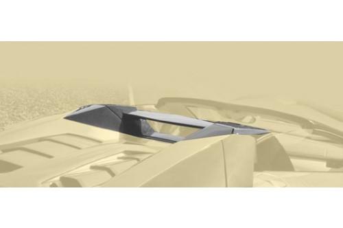 Mansory Tylny pałąk Aventador S Roadster