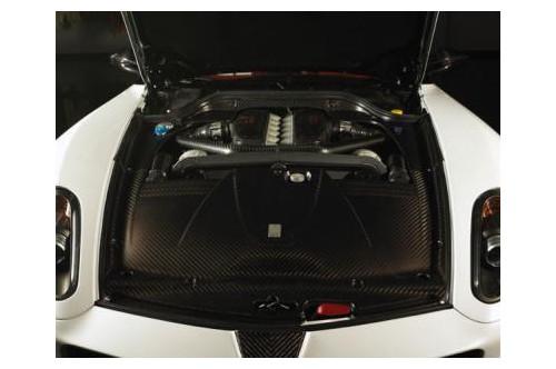 Mansory Pokrywa silnika 599
