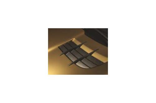 Mansory Wloty powietrza w masce SLR